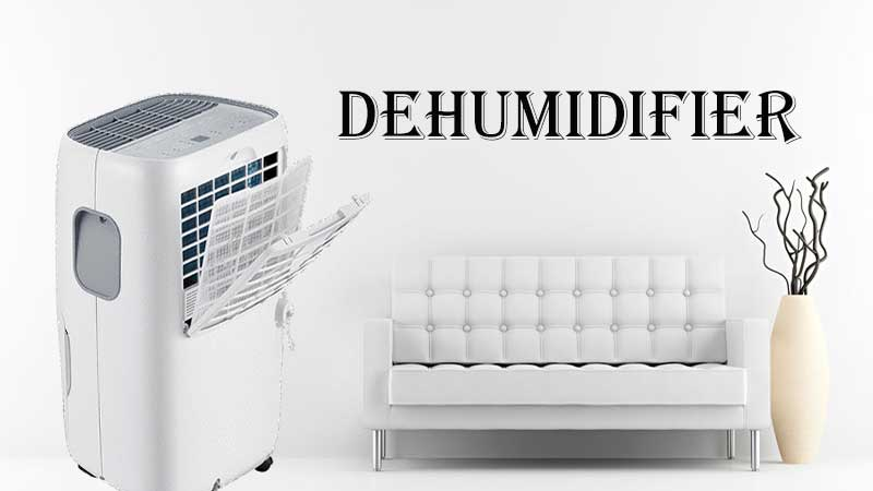 What to Consider Before Hiring a Dehumidifier