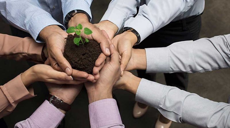why-team-building-in-the-workplace-is-important