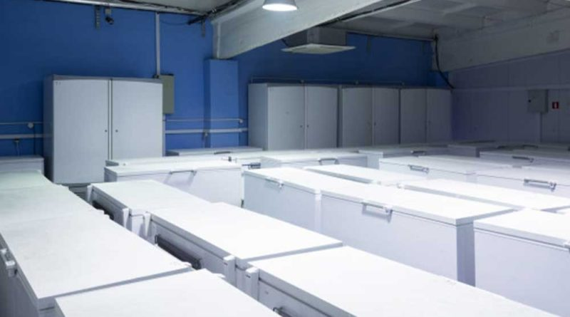Ideal-Temperature-for-Commercial-Freezers