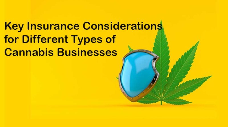 Insurance considerations for Cannabis business